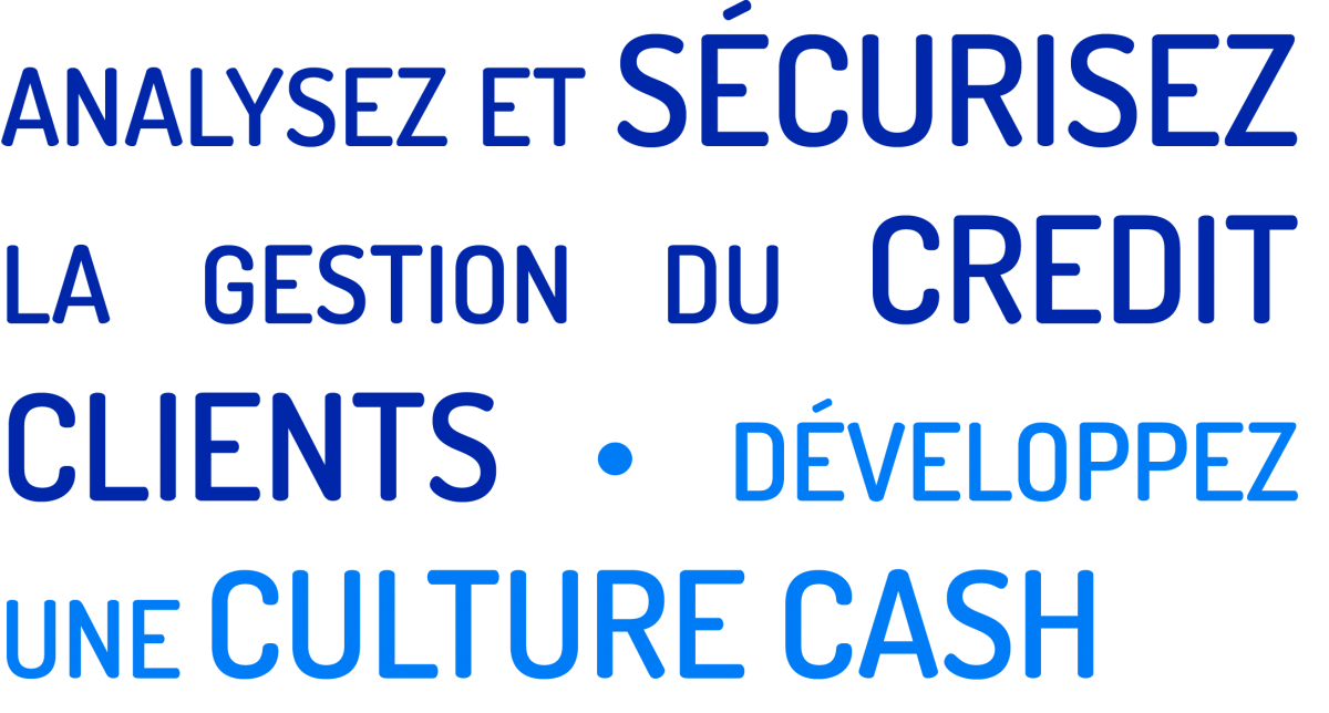 analyser et securisez la-gestion du credit clients, developpez une culture cash, gestion credit expert